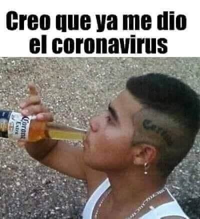corona and lyme virus meme